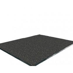 Tapis WELCOME anti-poussière 200x300 cm